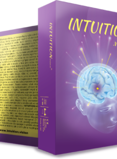 Hra INTUITION