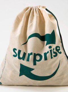 Prekvapenie