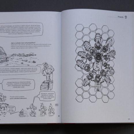 Ilustrované včelářství 01