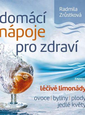 Domácí nápoje pro zdraví